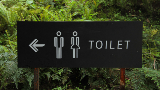 5 Simple Ways To Avoid Toilet Clogs